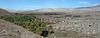 Coachella Valley Preserve (2712)