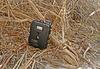 Coachella Valley Preserve Wildlife Camera (2708)