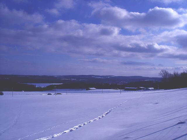 Winter landscapes / Paysages d'hiver au Québec /  St-Benoit-du-lac  -  Février 2009 -  Effet nuit  /  Night effect - Photofiltre