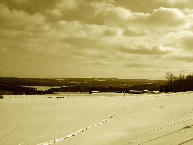 Winter landscapes / Paysages d'hiver au Québec /  St-Benoit-du-lac  -  Février 2009- Sepia