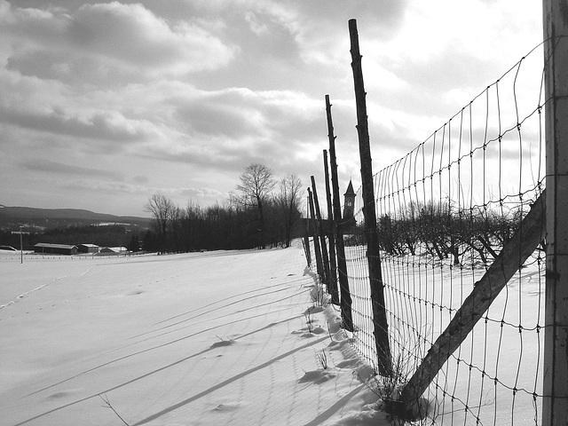 Abbaye de St-Benoit-du-lac au Québec /  Paysage d'hiver - Winter landscapes -  Février 2009 - B & W