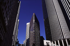 Skyscraper 388 Market