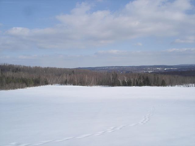 Paysage de l'hiver Québecois /   Quebec winter landscapes -  St-Benoit-du-lac .  Février 2009
