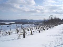 Winter at its best / Beauté hivernale à St-Benoit-du-lac au Québec  - Février 2009