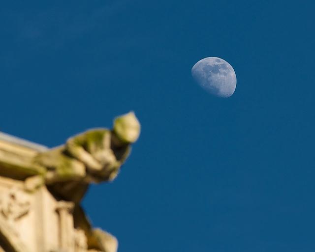 Moon + Gargoyles (10)