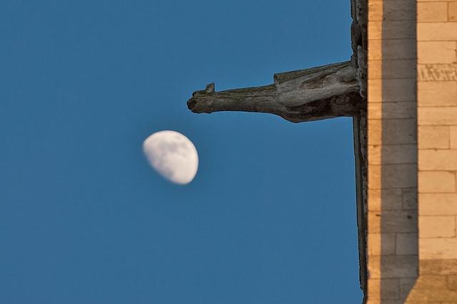 Moon + Gargoyles (6)