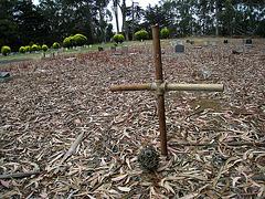 Greenlawn Cemetery - Nonendowment Care Section (1246)