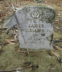 Greenlawn Cemetery - Nonendowment Care Section - James Williams (1241)