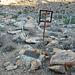 Willie Boy's Grave (2681)