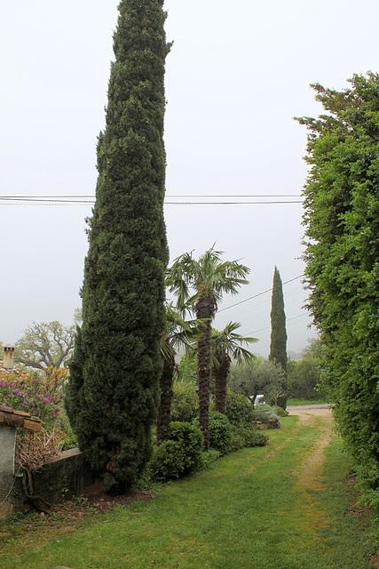 Le chemin vert chez  les voisins