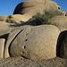 Alien Footprints At Jumbo Rocks (4614)
