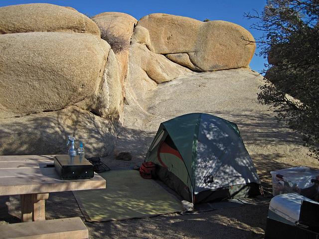 Camp at Jumbo Rocks (4603)