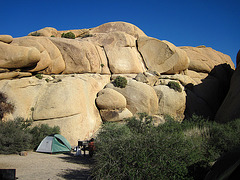 Camp at Jumbo Rocks (4607)