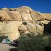 Camp at Jumbo Rocks (4607)