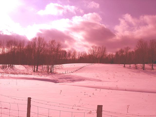 L'hiver à l'abbaye de St-Benoit-du-lac au Québec - Février 2009- Effet coucher de soleil