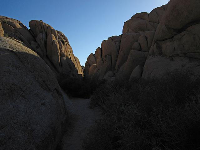 Jumbo Rocks (4605)