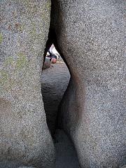 Jumbo Rocks (4610)