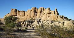 Jumbo Rocks (4611)