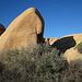 Jumbo Rocks (4619)