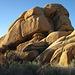 Jumbo Rocks (4625)