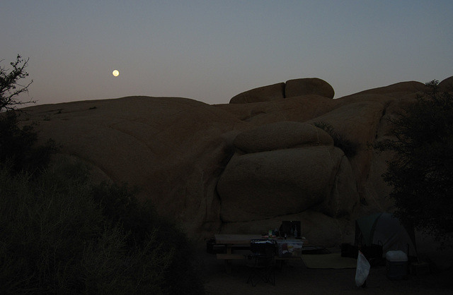 Moonrise at Jumbo Rocks (4626)