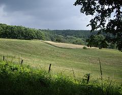 oberhalb von Einbeck (am Stadtwald)