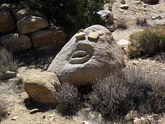 Rock Face (4642)