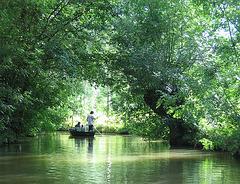Eva chante : Le long de la rivière