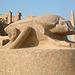 Le Scarabée Porte-bonheur - Louxor, Egypte