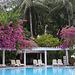Maledives-Pool