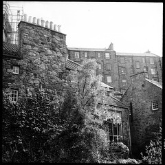 Dean Village Walls and Trees