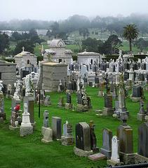 Italian Cemetery (1298)