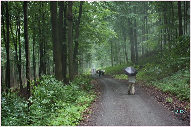 etwas Regen beim  wandern /some rain while we walk