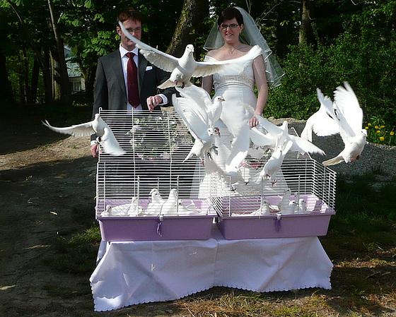Hochzeit auf dem Schloßgut Mariabrunn