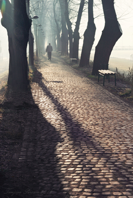 Long Shadow Path