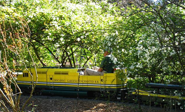 Descanso Gardens RR (2208)