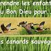 Jacques Douai chante : Trois Canards Sauvages