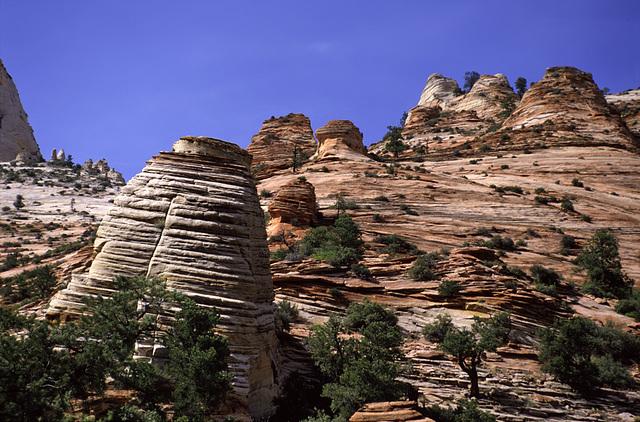 Rock Landscape in Zion National Park