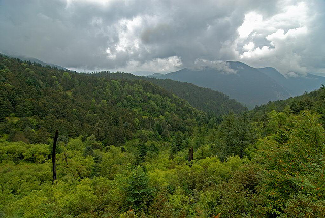 Panorama view at the Yulong Mountain