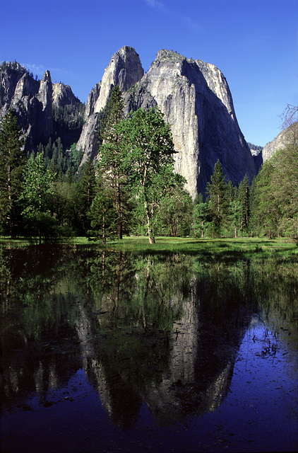 Reflection of Cathedral Rocks