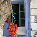Crète juillet  2008 038