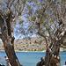 Crète juillet  2008 059