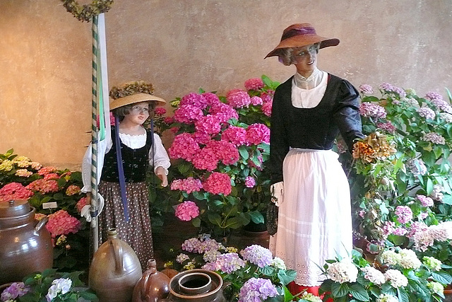 Größte Hortensienschau Deutschlands im Barockschloß Zuschendorf