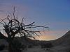 Mecca Hills at Dawn (0507)