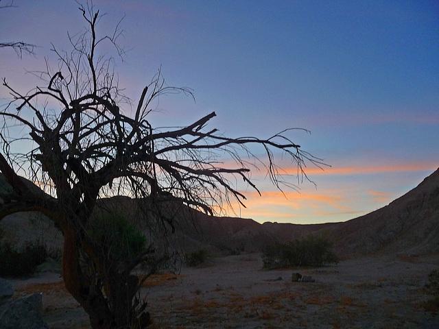 Mecca Hills at Dawn (0508)