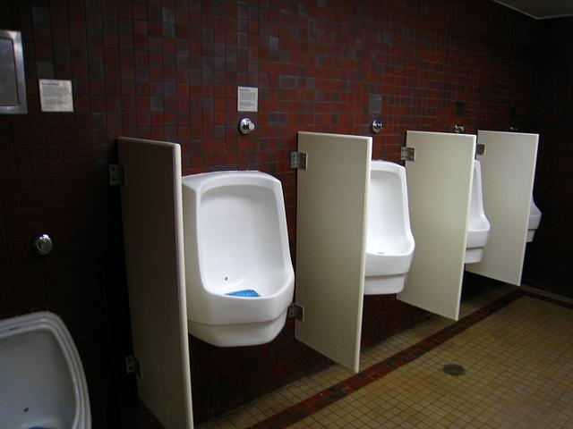 Descanso Gardens Urinals (2228)