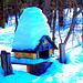 Courrier et oiseaux  / Bird house mailbox -  St-Benoit-du-lac  au Québec. CANADA.  Février 2009 - Photofiltrée