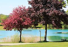 Salemer Schloßsee