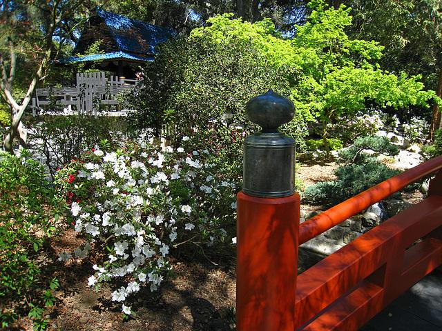 Japanese Garden (2312)