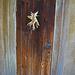 Descanso Gardens Doorway (2350)